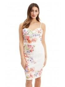 Jane Norman Floral Punchout Bodycon Dress