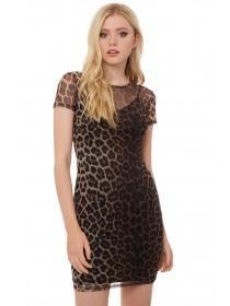 Jane Norman Animal Print Mesh Dress