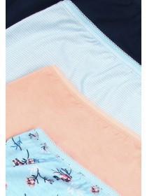 Womens 4pk Blue Stripe Briefs