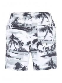 Mens Monochrome Pale Swim Shorts