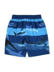 Older Boys Blue Stripe Shark Boardshorts