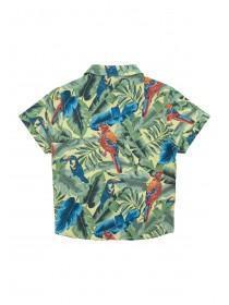 Younger Boys Tropical Toucan Pint Shirt