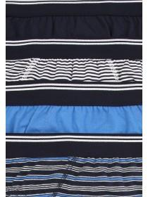Mens 4pk Blue Stripe Briefs
