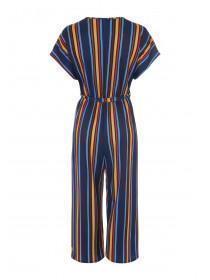 Womens Multicolour Stripe Cropped Jumpsuit