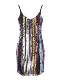 Womens ENVY Multicolour Sequin Stripe Dress