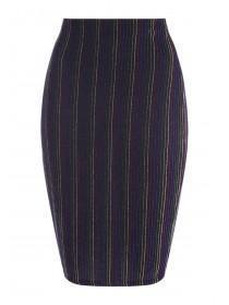 Womens ENVY Rainbow Stripe Pencil Skirt
