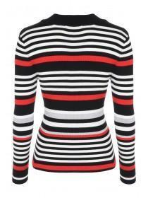 Womens Black Stripe Turtle Neck