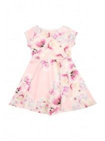 Younger Girls Pale Pink Botanical Dress
