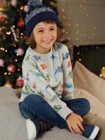Younger Boys Grey Dinosaur Sweatshirt