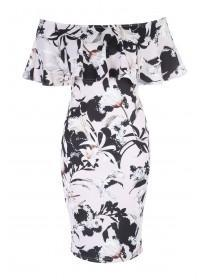 Jane Norman Floral Print Ruffle Bardot Dress