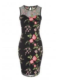 Jane Norman Black Floral Mesh Embroidered Dress