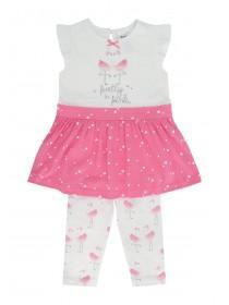 Baby Girls Pink Flamingo Top & Skirt