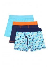 Younger Boys 3pk Blue Trunks