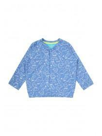 Baby Boys Blue Dinosaur Sweater