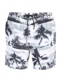 Mens Monochrome Pale Swim Shorts