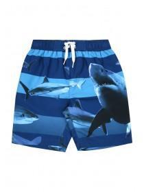Older Boys Blue Stripe Shark Boardshorts