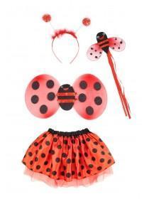 Girls Red Ladybird Dress Up Set
