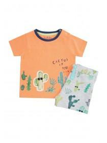 Baby Boys Orange Cactus T-Shirt and Short Set