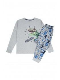 Older Boys Grey Dinosaur Pyjama Set