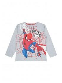 Younger Boys Grey Spiderman T-Shirt