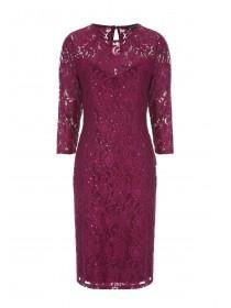 Womens Wine Lace and Sequin Dress