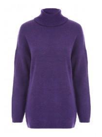 14e452c5ff1 Womens Purple Roll Neck Jumper ...