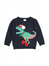 Younger Boys Elf Dino Jumper