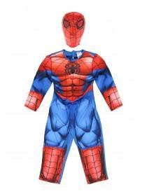 Boys Spiderman Dress Up Costume