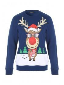 Mens Reindeer Crew Neck Sweater