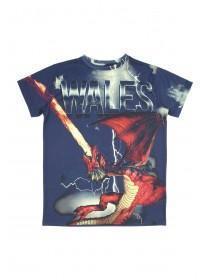 Older boys Dragon Wales T-Shirt