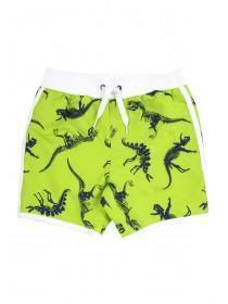 Younger Boys Dinosaur Print Swim Shorts