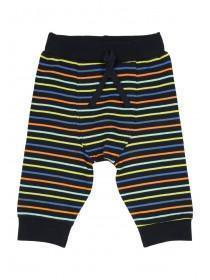 Baby Boys Stripe Jogger