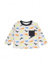 Baby Boys Long Sleeve Dino Print T-shirt