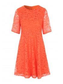 Womens Orange Fit And Flare Lace Dress