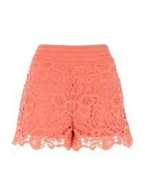 Womens Orange Crochet Shorts