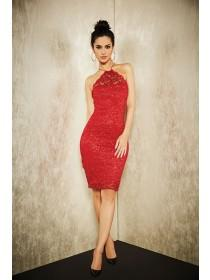 Womens ENVY Red Lace Racer Dress
